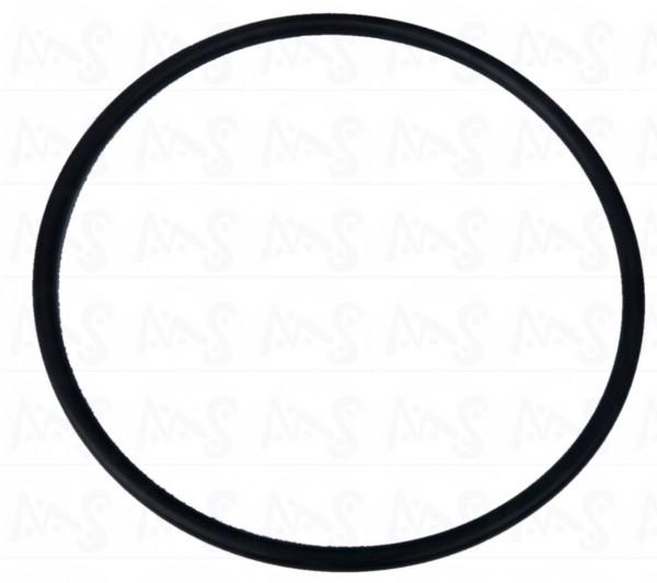 O - Ring für 6 Wegeventil Sandfilter Prima Blau
